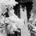 Black-and-white infrared print, 2001