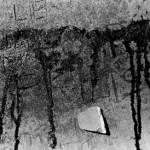 """Selenium-toned fibre print, 2005, 9.5"""" x 6.5"""""""